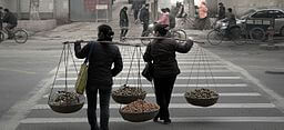 women_are_carrying_basket_of_fruit