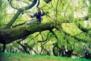 Estevam Ribiero on a tree: #taijimelody challenge