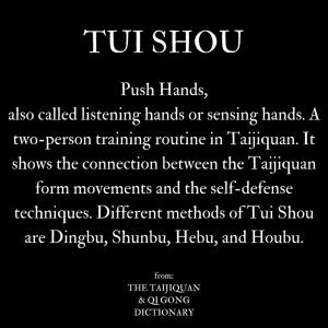 what is Pushing Hands / Tui Shou in Taijiquan